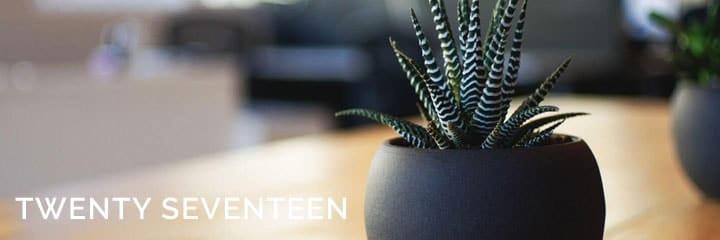 twenty seventeen imagen