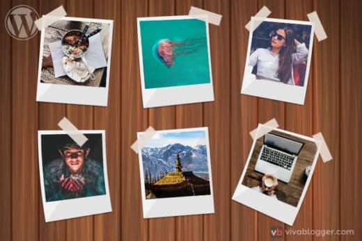 mejores plugins para portafolio de fotos en wordpress