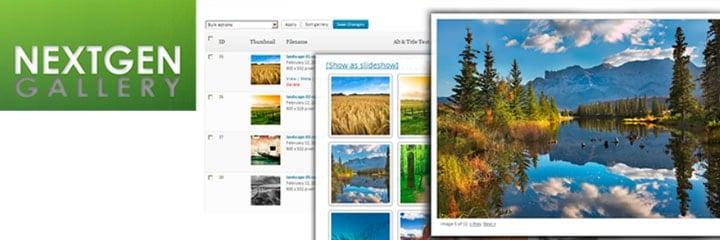 NextGEN Gallery crea portafolios de fotos en wordpress